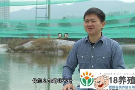 潘磊年收入3000万养红泥鳅的秘诀 _水产养殖(养泥鳅的技巧)