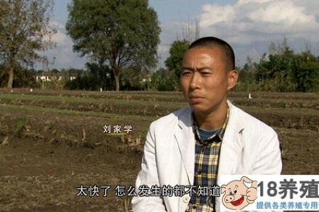 刘坐轮椅撑起天空,养泥鳅青蛙,每亩收入3000多元 _水产养殖(养泥鳅的技巧)