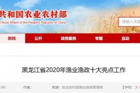 2020年黑龙江省渔政十大亮点