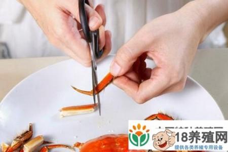 如何正确吃大闸蟹(插图)? _水产养殖(养大闸蟹的技巧)