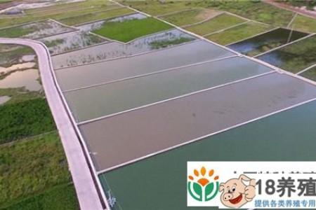 云南省红河县沙恩哈尼梯田里的妇女在养泥鳅 _水产养殖(养泥鳅的技巧)