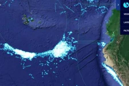 中国宣布禁止在加拉帕戈斯群岛公海捕鱼