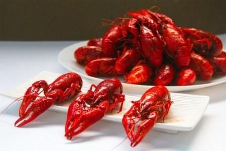 一亩小龙虾一年赚多少?养小龙虾有什么风险?