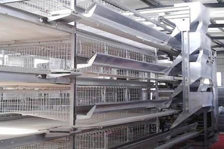 叠蛋鸡笼养殖设备常见故障及排除