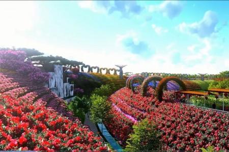 """农业和农村事务部发布了中国农村产业优质发展""""十大模式"""""""