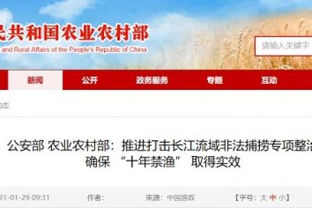 """公安部农业农村司:推进长江流域非法捕捞专项整治,确保""""十年禁渔""""成效"""