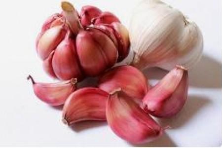 大蒜可以治猪拉肚子,不吃,感冒,积食!