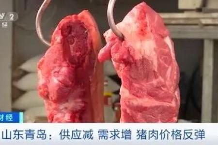 供应减少,需求增加,端午节前猪肉价格上涨,商家说每天涨1元