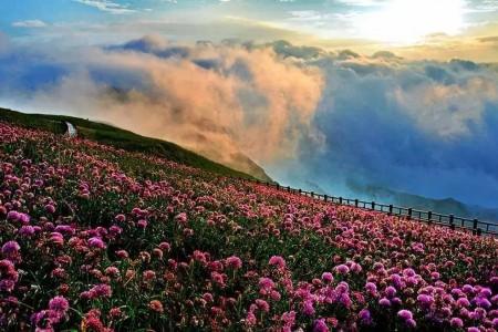贵州基本实现了小村庄和联通世界30多个自然村4G网络全覆盖