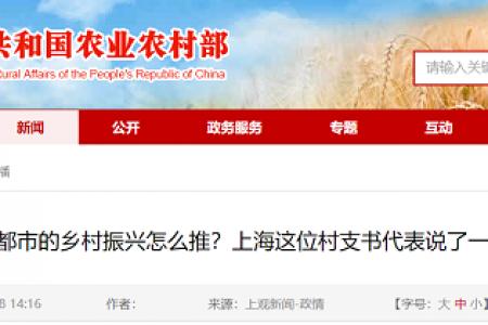 如何推动国际大都市农村振兴?上海村党委书记的代表发自内心地说了一些话