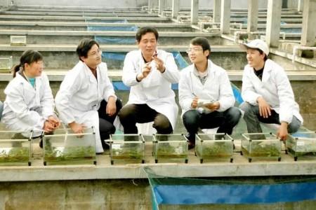 """十几万人都是这样养的!""""一米三虾""""模式每亩收入6000元,已推广到500多万亩"""