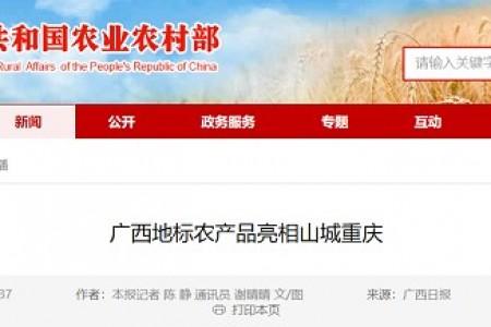 广西标志性农产品出现在山城重庆