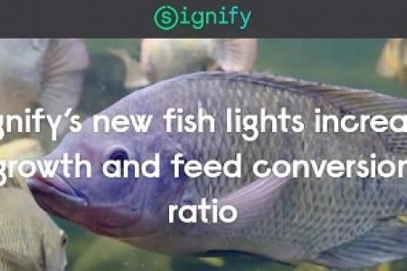 结果表明,发光二极管照明能促进罗非鱼的生长,降低饲料系数