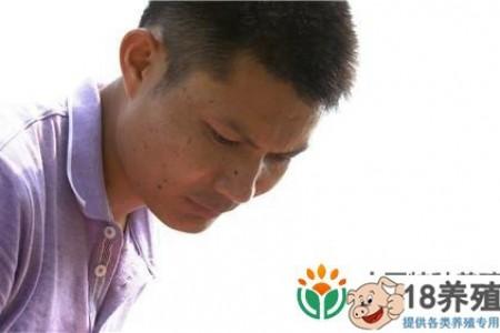 湖南永州卞国民以325元的财富秘籍卖了一磅泥鳅 _水产养殖(养泥鳅的技巧)