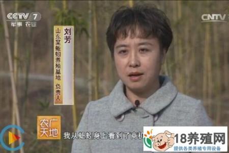 山东省淄博市刘放养殖蚯蚓,生产蚯蚓粪,带来了数百万的财富 _昆虫养殖(养蚯蚓的技巧)
