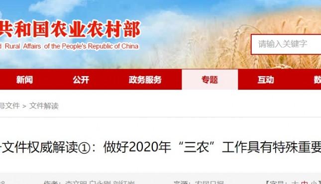 """1号文件权威解读①:做好2020年""""三农""""工作尤为重要"""