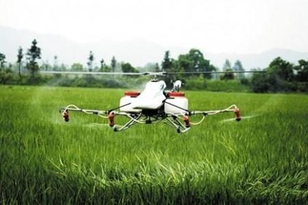辽宁:现代农业夯实小康之路