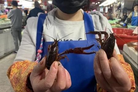 """小龙虾""""抓新鲜""""清单教你挑虾中的""""肥肉"""""""