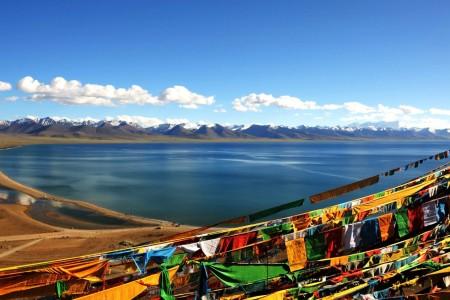 61万人转移就业,收入43.4亿元。西藏农牧民转移就业创历史新高