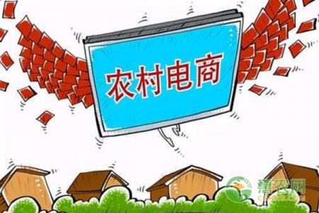 发展农村电子商务,帮助消费和减贫