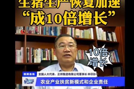 """《鸡西观察》专栏:生猪生产恢复加速""""十倍增长"""""""