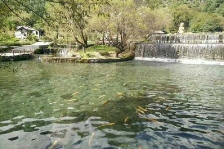 鱼塘夏季管理技术