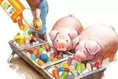 这种猪病很常见,但是很容易被养猪户忽视!